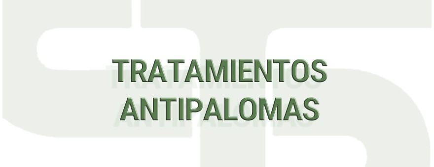 Tratamientos Antipalomas